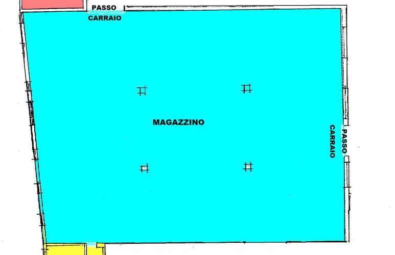 panza-2-copy